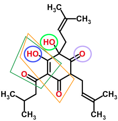 Beery Molecules – part 6, why is humulone an 'alpha acid'?